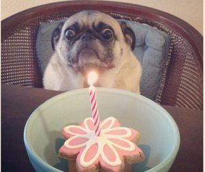 Scary Birthday